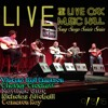 """Halfway to Jackson"" - Vincent Neil Emerson LIVE @ Live Oak Music Hall"