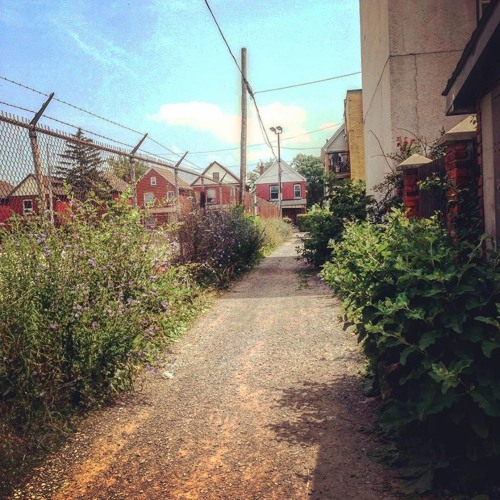 Hamilton's alleys, who says they can't be beautiful?