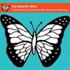 What is the Butterfly Effect Webinar?