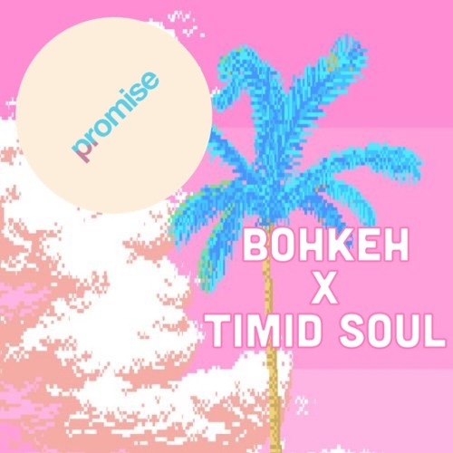 Spazzkid - Promise (Bohkeh X Timid Soul Remix)