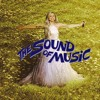 Lady Gaga The Sound Of Music (Tribute Live At The 87th Academy Awards 2015) [Remaster Audio]