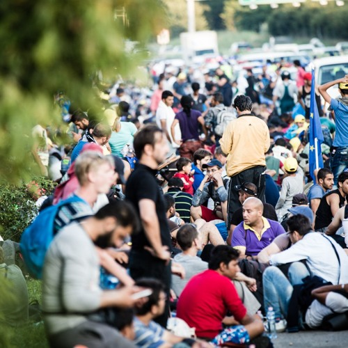 ECFR's World in 30 Minutes: East - West divide on refugee crisis?