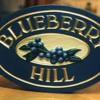 Blue Berry Hill, _  Fat Domino  ( cover )
