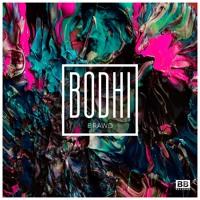 Bodhi - Brawd