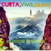 Download Felicidade - Andynho Agassís -  (  audio ao vivo  dueto com Dino fernandes na percuteria) Mp3