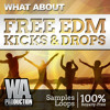 350+ FREE EDM Big Room Tuned Kick Samples & Drops + MIDI Loops (W. A. Production)