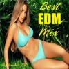 Best EDM Mix - September 2015 #2