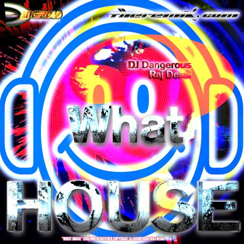 Justin bieber what do you mean house dj dangerous raj for House music meaning
