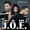 What Is Love [Team J.O.E. Cover]