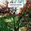 Time Lapse - Ludovico Einaudi (ML Edit)