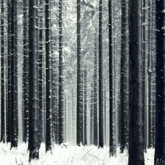 Darkforest