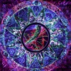 Shiva Vibes