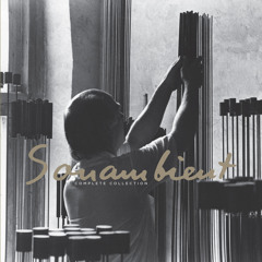 """Harry Bertoia """"Mellow Tops"""" from The Complete Sonambient Collection  11 CD  Box - Available 12.5.15"""
