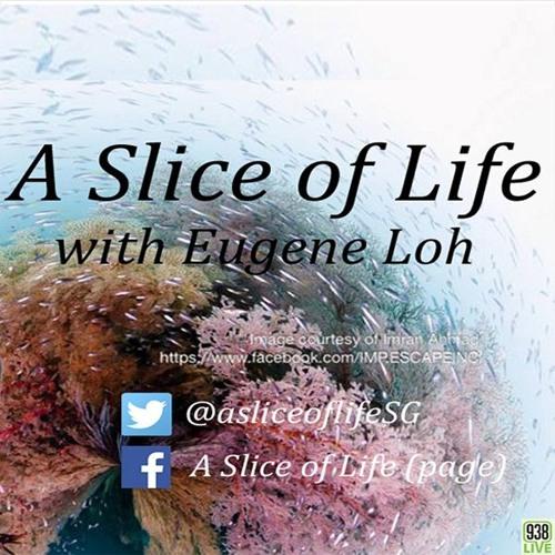 Ignite your inner life coach! Eugene Loh speaks with Malti Bhojwani