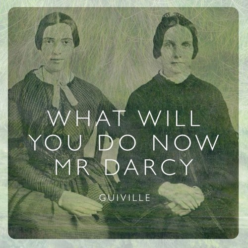 What Will You Do Now Mr Darcy (FREE DOWNLOAD)