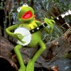Kermit - Luke Bryan - Strip It Down