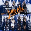 Little Mix | Live at Apple Festival 2015 [Grown]