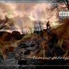 Cover Pista 3 Album Camino Pedregoso