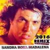 Sidney Magal - Sandra Rosa Madalena (Remix Dj Alan Henrique)