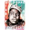 N0T0Rl0US BIG - BlG P0PPA (Vandelux Remix)
