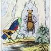 La Cigale et la Fourmi_Jean de la Fontaine_3ème cycle