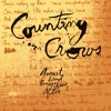 Accidentally in Love - Counting Crows [Cover]