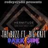 Hermitude Ft. Big KRIT- The Buzz Dark Side