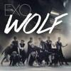 Wolf-Exo (femal ver.)