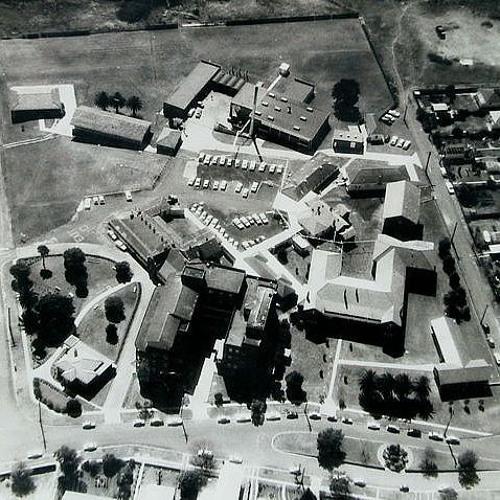 Friends of Wallsend Hospital - Janet Budge - 20 Sept 1987