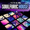 Soulfuric House Niche Audio Kits