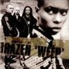 Skunk Anansie 'Brazen Weep' Dreadzone Remix