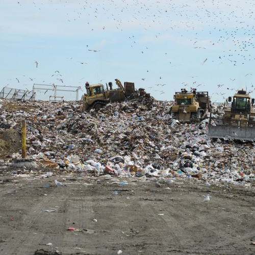 Trash Talk: Uncovering the Waste in U.S. Landfills