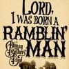Allman Brothers - Ramblin' Man - (cover by Carla Iglesias)