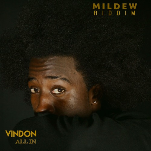 All In [Mildew Riddim]
