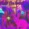 BalaRama - Shubi The Rabbit