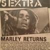 Bob Marley & the Wailers Live, Wales, 1980