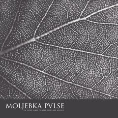 MOLJEBKA PVLSE - In Love and Death