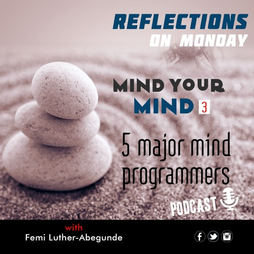 Femi L. Abegunde - Mind Programmers