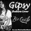 Gipsy (Shakira Cover)