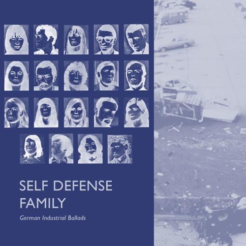 Self Defense Family - It's Best We Address It