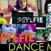 Poddak inna Gannakan Seylfie_DANCE MIX_DJ GRANADE