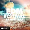 Big EDM - EDM Festival Essentials [Construction Kits, Drop Loops, Presets Kicks] #1 Beatport Top 10!