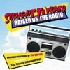Raised On The Radio (Ravyns Cover)