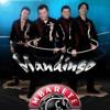 Grupo Mandingo (a donde vayas iré)acústico en vivo MP3 Download
