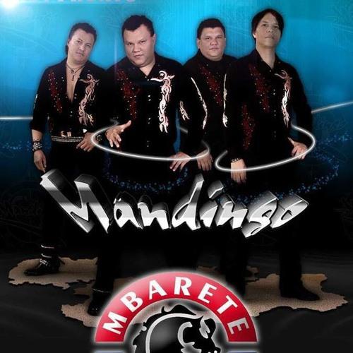 Download Grupo Mandingo (a donde vayas iré)acústico en vivo