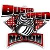 Doug And Dave on Brock Lesnar vs Big Show at Madison Square Garden