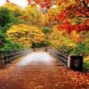 October (Eric Whitacre)