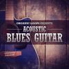 Acoustic Blues Guitar by Loopmasters (141 samples)