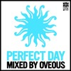 Perfect Day (Mixed By OVEOUS)
