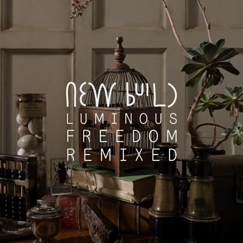 New Build - Luminous Freedom (Tim Green Remix)